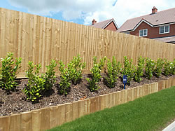 New softwood treated sleepers